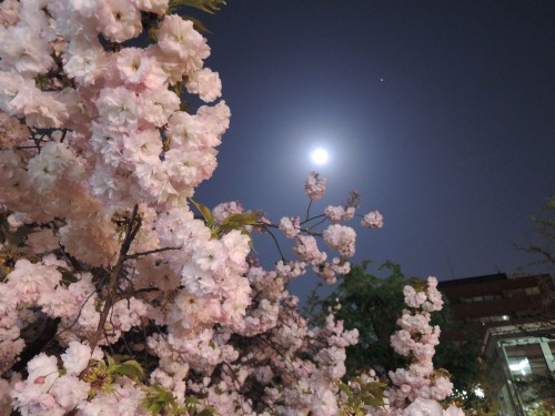 140415-moon1
