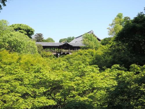 140507-tsutenbashi