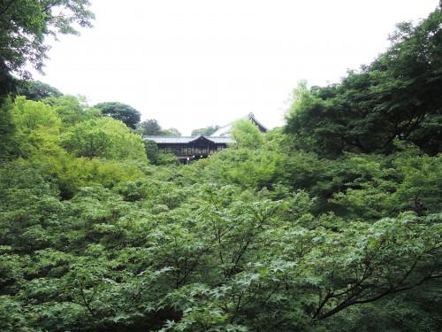 140705-tsutenbashi