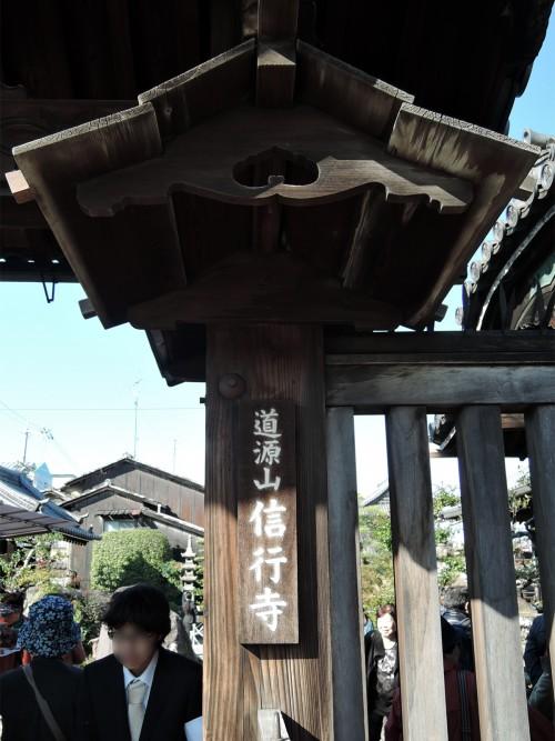 151104-shingyoji-02