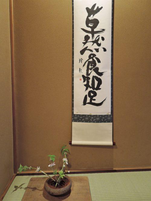 160412-nakahigashi02