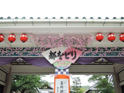 160424-miyakoodori03