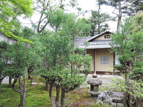 160424-miyakoodori09