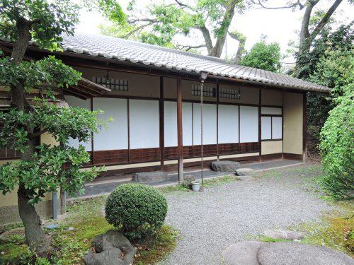 160424-miyakoodori10