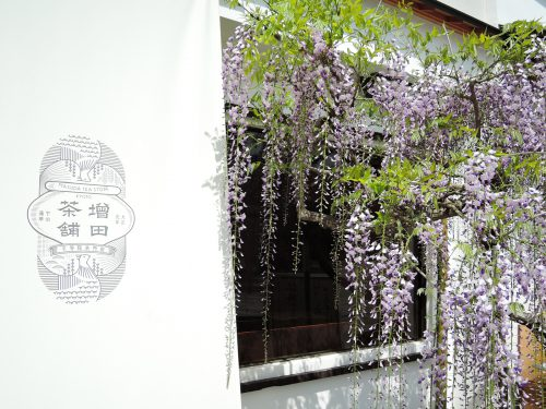 160424-uji-masudacyaho02