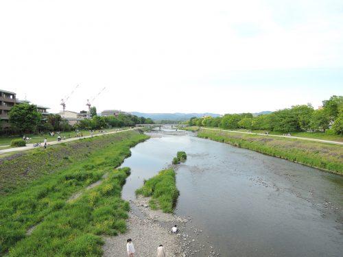 160505-kamogawa02